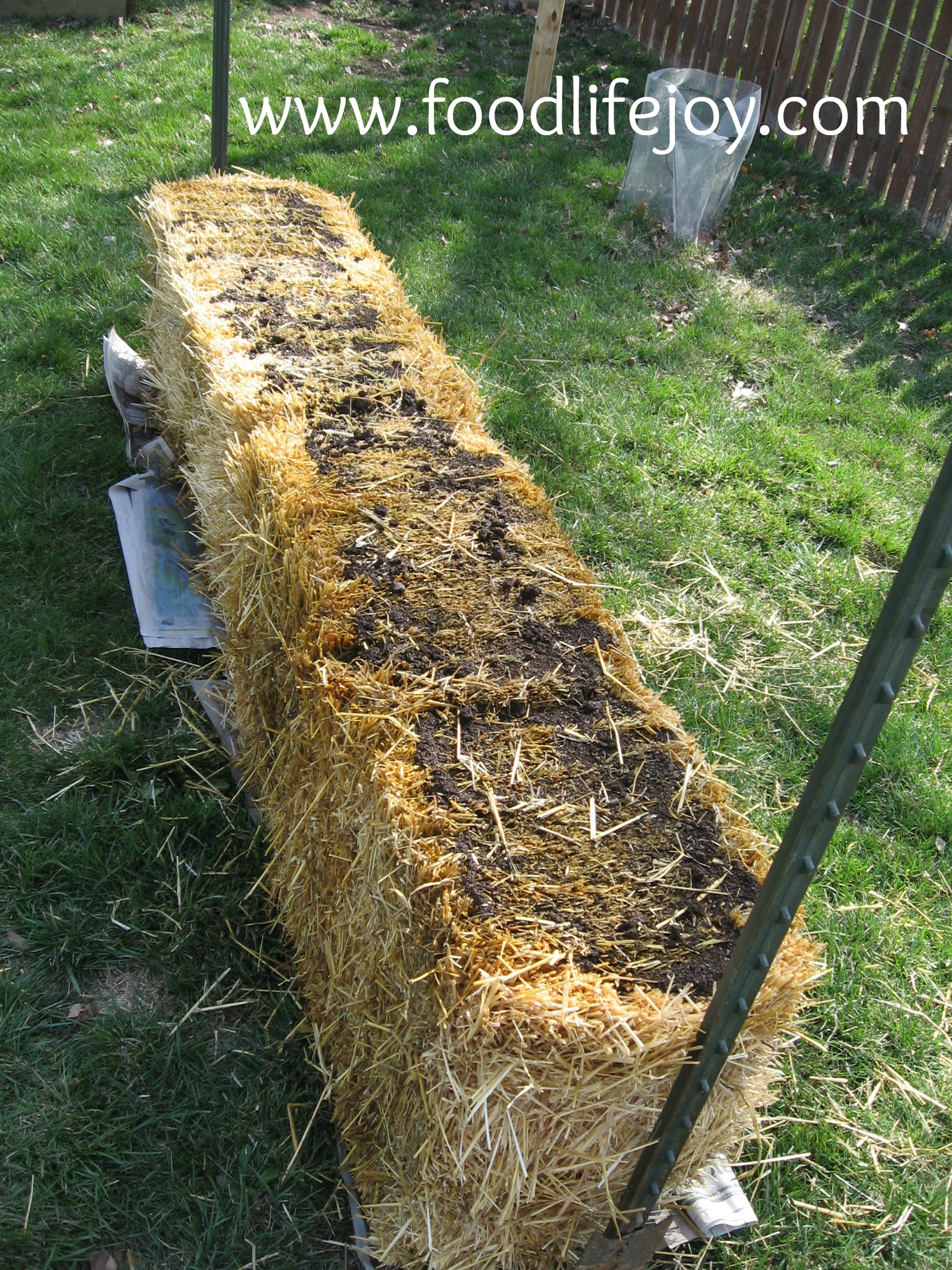 photo How to Grow a Straw Bale Garden