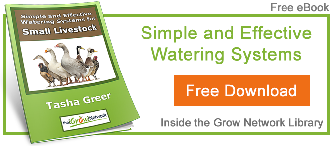 Simple and Effective Watering Systems for Small Livestock