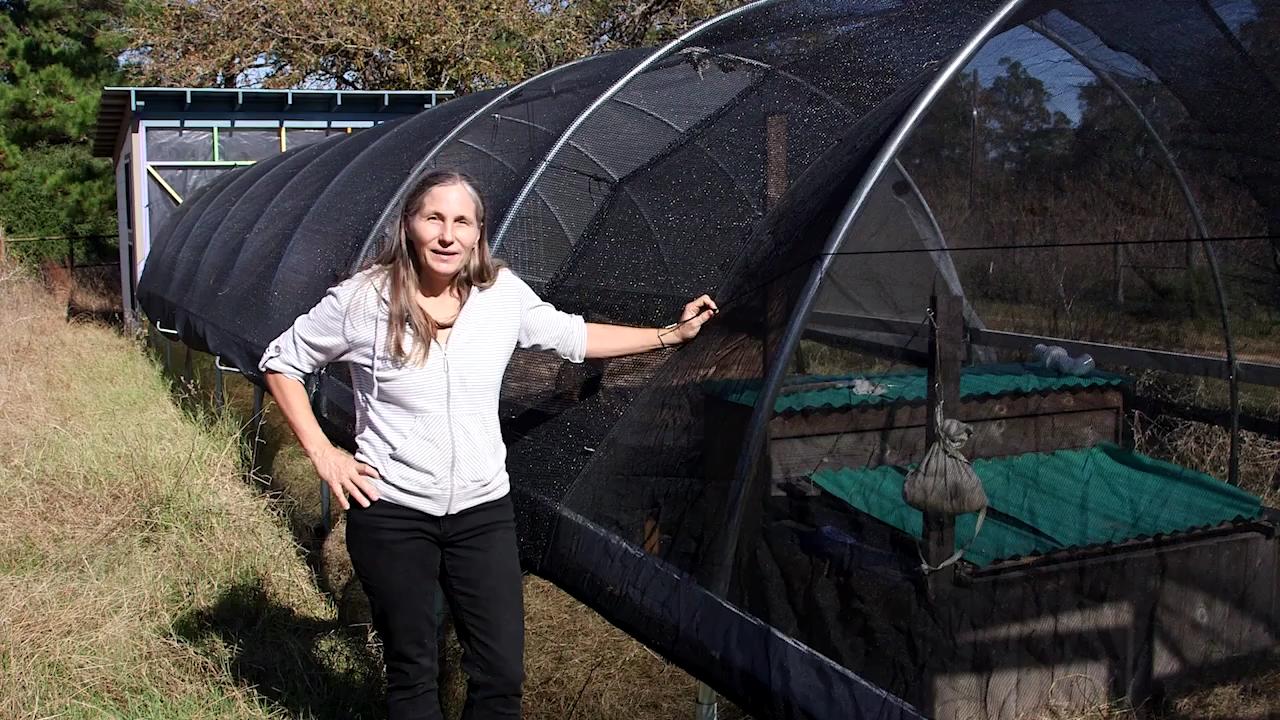 hoop house plans as a greenhouse alternative