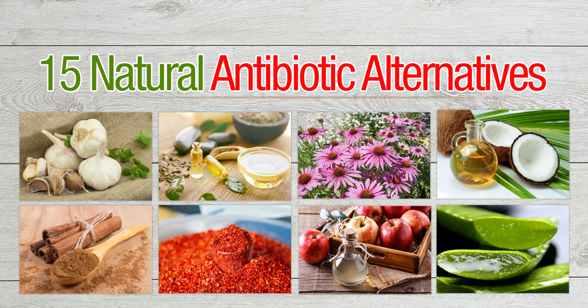 15 Natural Antibiotic Alternatives