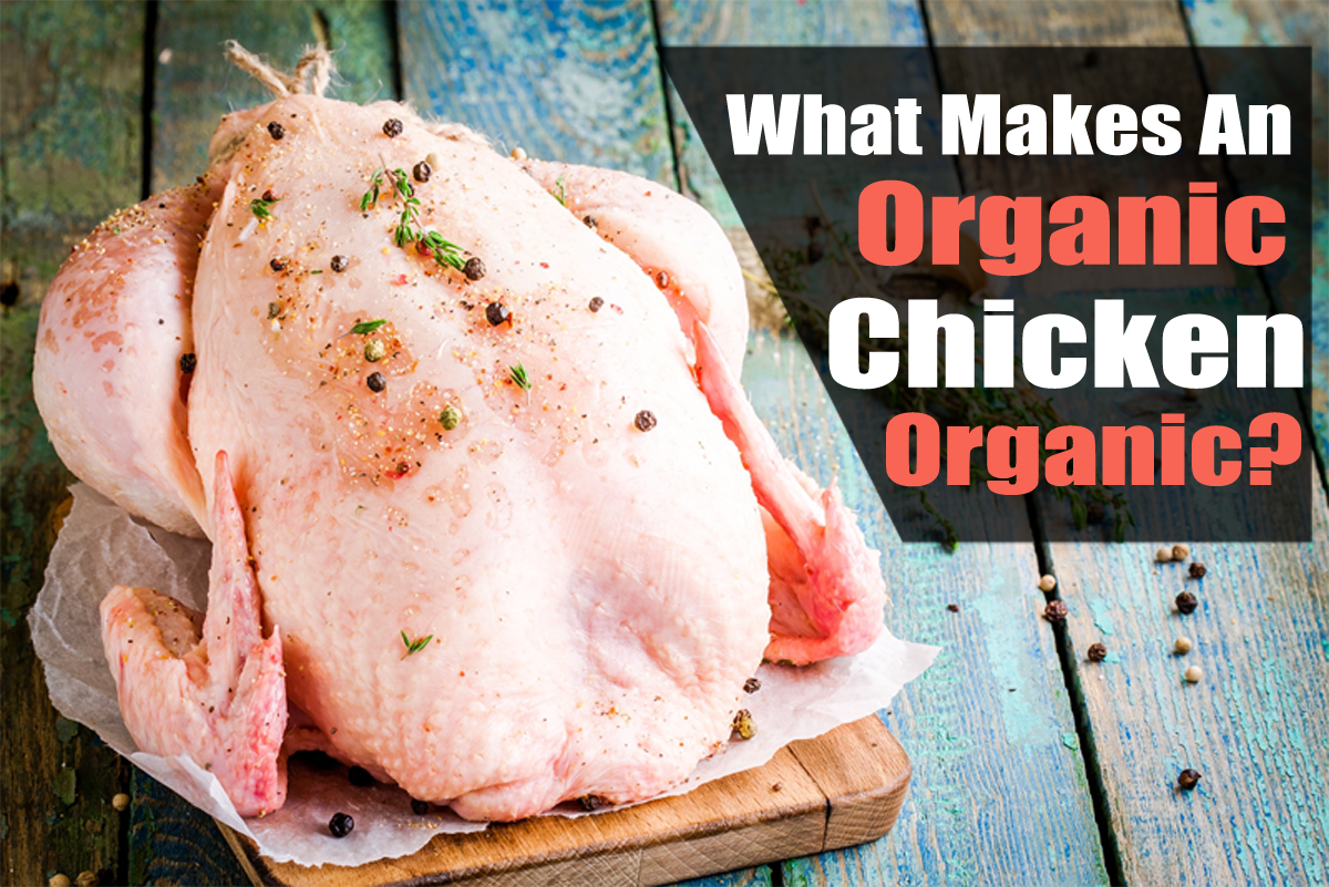 What Makes An Organic Chicken Organic