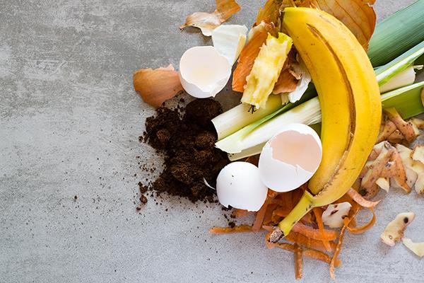 #5: Container Garden Smoothie Fertilizer