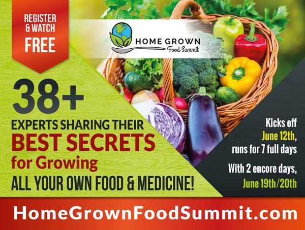 Home Grown Food Summit 2017