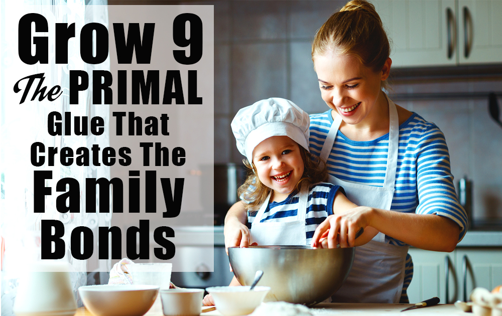 family-bonds