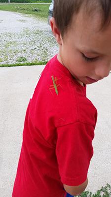 kids-gardening-mantis