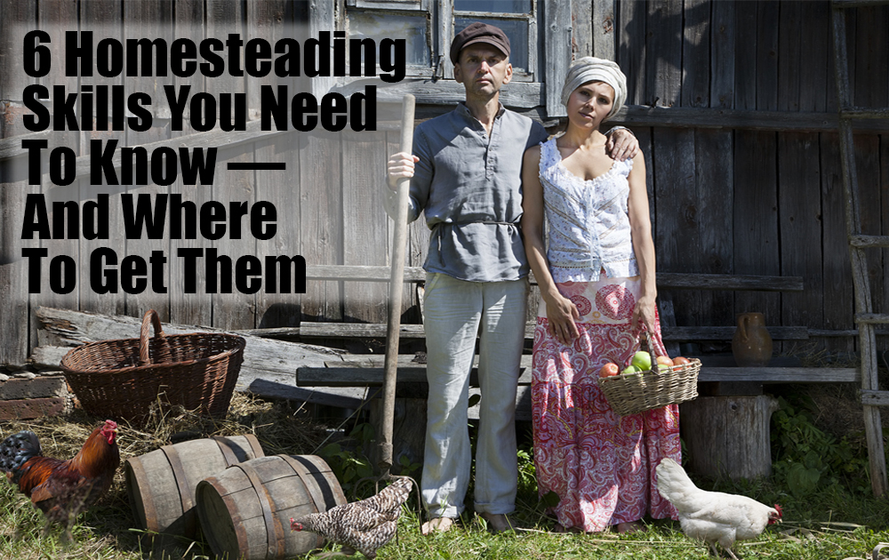 learn-homesteading-skills