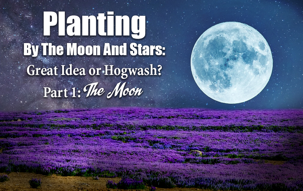 planting-by-the-moon