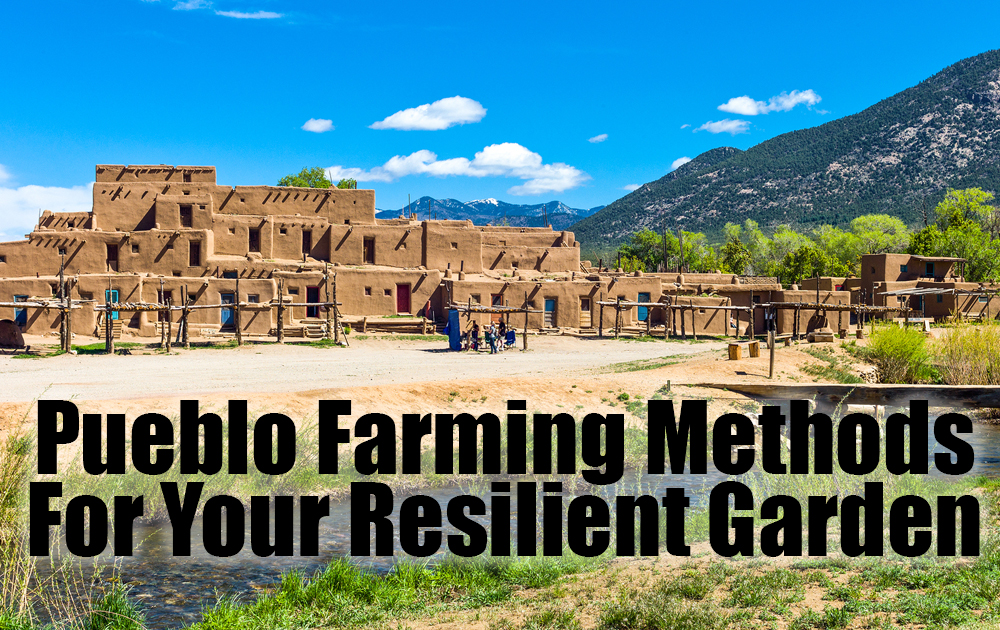 pueblo-farming-methods