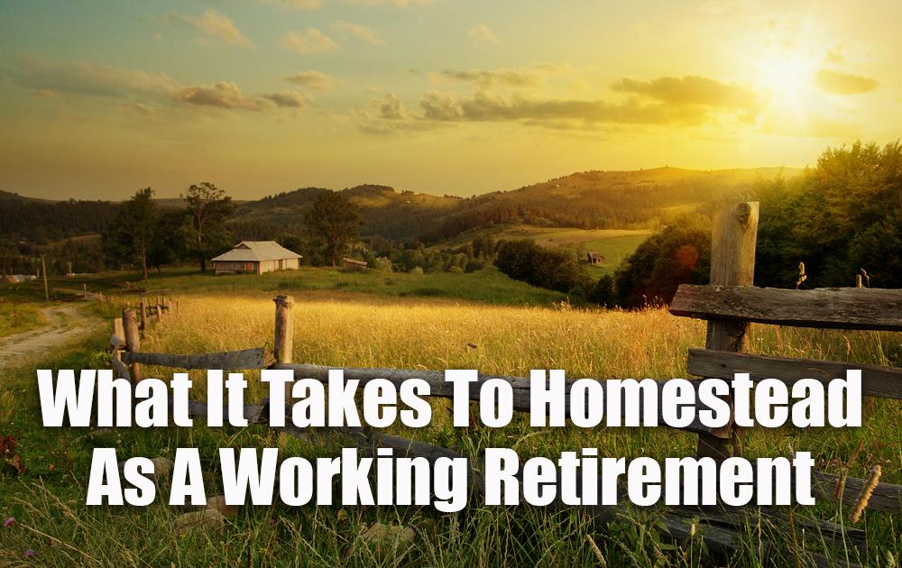 working-retirement