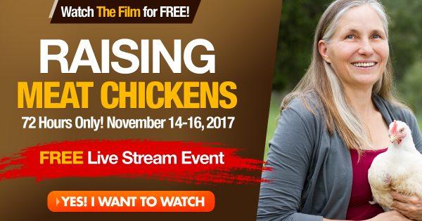 Raising Meat Chickens_1200x6301