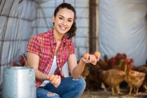 Backyard Chickens for Egg Production Certification