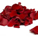 12 Uses for Rose Petals—From the Kitchen to the Boudoir (With Recipes)